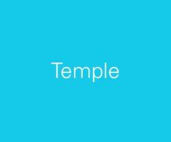 sub-cat-temple-600x500